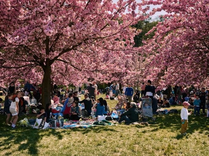 jf verganti dejeuner sous arbre parc de sceaux