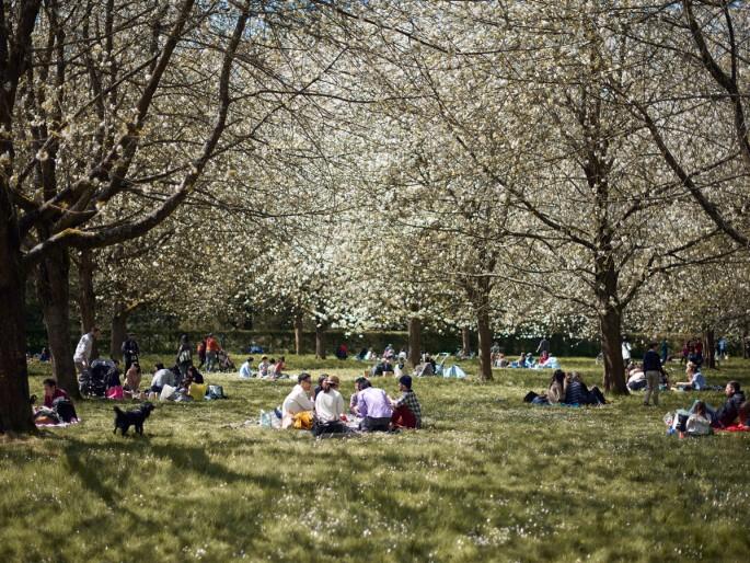 jf verganti dejeuner sur herbe parc de sceaux