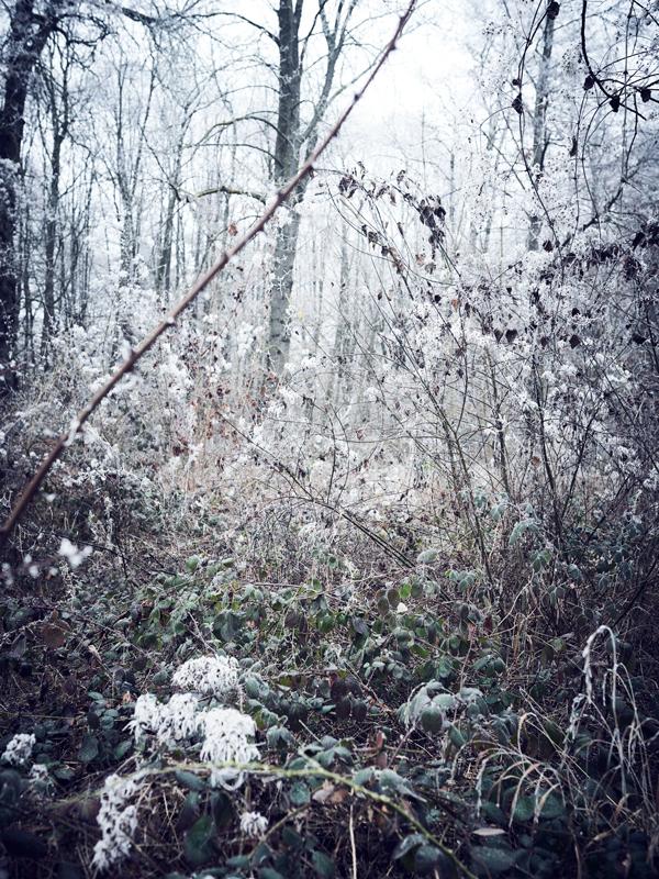 jf verganti hiver paysages1