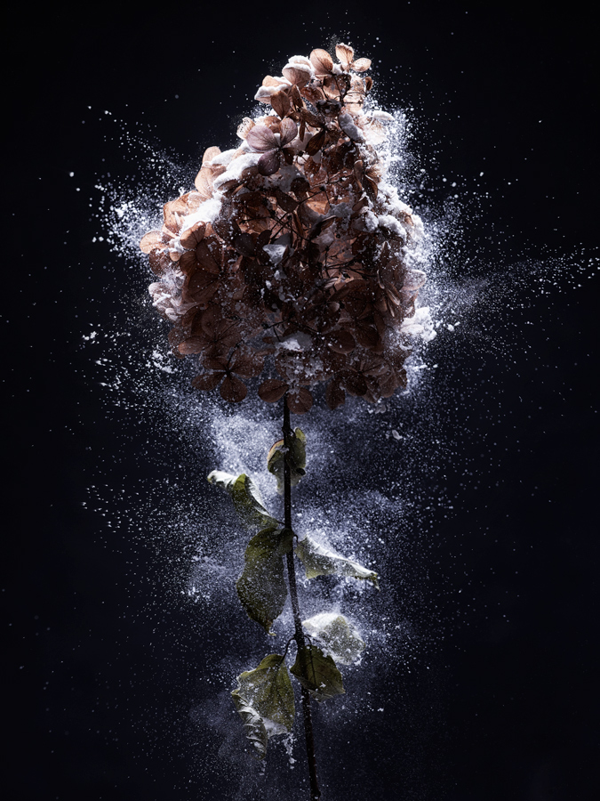 jf verganti Explosion 1