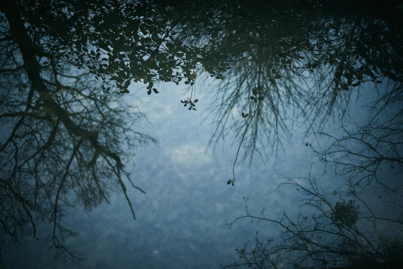 jf verganti reflet 1